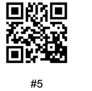 QR Clue #5